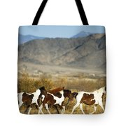 Mustangs Tote Bag by Mark Newman and Photo Researchers