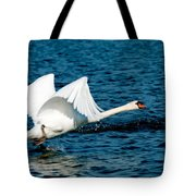 Mute Swan Gaining Momentum Tote Bag