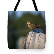 My Drain Tote Bag