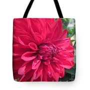 my favorite Dahlia Tote Bag