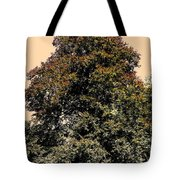 My Friend The Tree Tote Bag