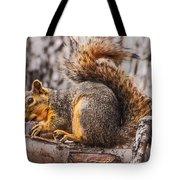 My Nut Tote Bag