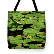 My Pad Or Yours Tote Bag