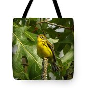 My Pretty Yellow Belly Tote Bag