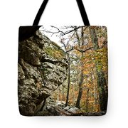My Rock My Shelter Tote Bag