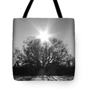 My Shadowed Roots Tote Bag