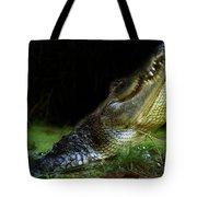 My Swamp Tote Bag