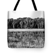 Myakka River Wilderness Tote Bag