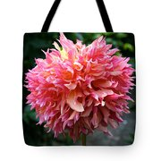 Myrtle's Folly Full Bloom Tote Bag