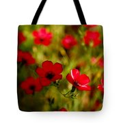 Mysterious Red Zone Tote Bag