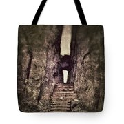 Mysterious Stairway Into A Canyon Tote Bag