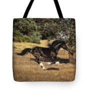 Mystic Flight Tote Bag