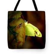 Mystical World Tote Bag