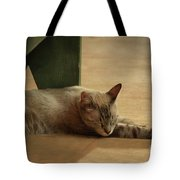 Naping In The Shade Tote Bag