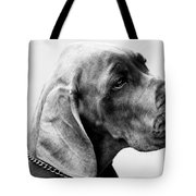 Napoleon Mischief Dog Portrait  Tote Bag