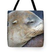 Napping Tote Bag