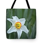 Narcissus In The Rain Tote Bag