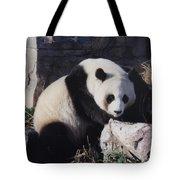 National Zoo Panda Tote Bag