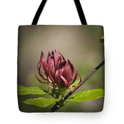 Native Sweetshrub Tote Bag