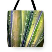 Natural Abstract 23 Tote Bag