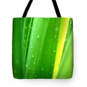 Natural Abstract 24 Tote Bag