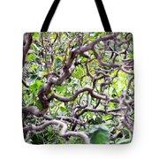 Natural Abstract 3 Tote Bag