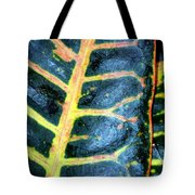 Natural Abstract 6 Tote Bag