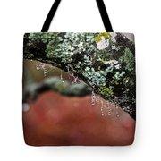 Natural Bling Strings Tote Bag