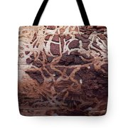 Natural Carvings Tote Bag
