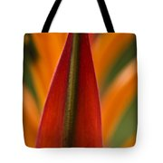 Natural Form Tote Bag