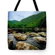 Natural Pangaea  Tote Bag by Lj Lambert