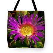 Nature Aglow Tote Bag
