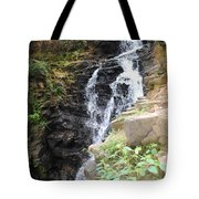 Nature Falls Tote Bag