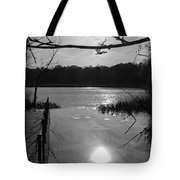 Nature Reflection Tote Bag