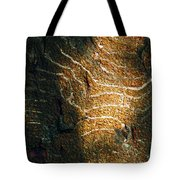 Nature's Abstractions IIi Tote Bag