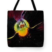 Nature's Amazing Colors - Pansy Tote Bag