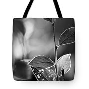 Natures Back Light Tote Bag