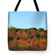 Natures Colors Tote Bag