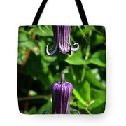 Nature's Curly Q's Tote Bag