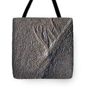Natures Freeway Tote Bag