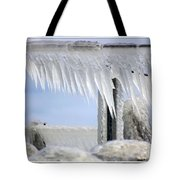 Natures Ice Sculptures1 Tote Bag