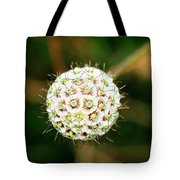 Nature's Perfect Orb Tote Bag