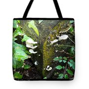 Natures Right Angle Degrees Tote Bag