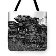 Natures' Ruins Tote Bag