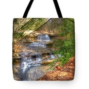 Natures Shadows And Light Tote Bag