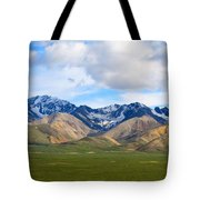 Nature's Spectacle Tote Bag