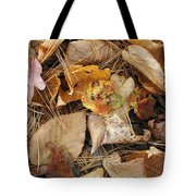 Nature's Still Life 1 Tote Bag
