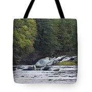 Nawadaha Falls 1 Tote Bag