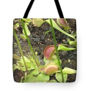 Nepenthes Tote Bag