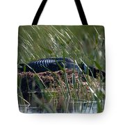 Nesting Loon Tote Bag